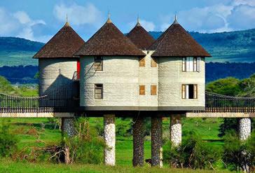 4 Days Tsavo West, Amboseli  Taita Hills Saltlick.